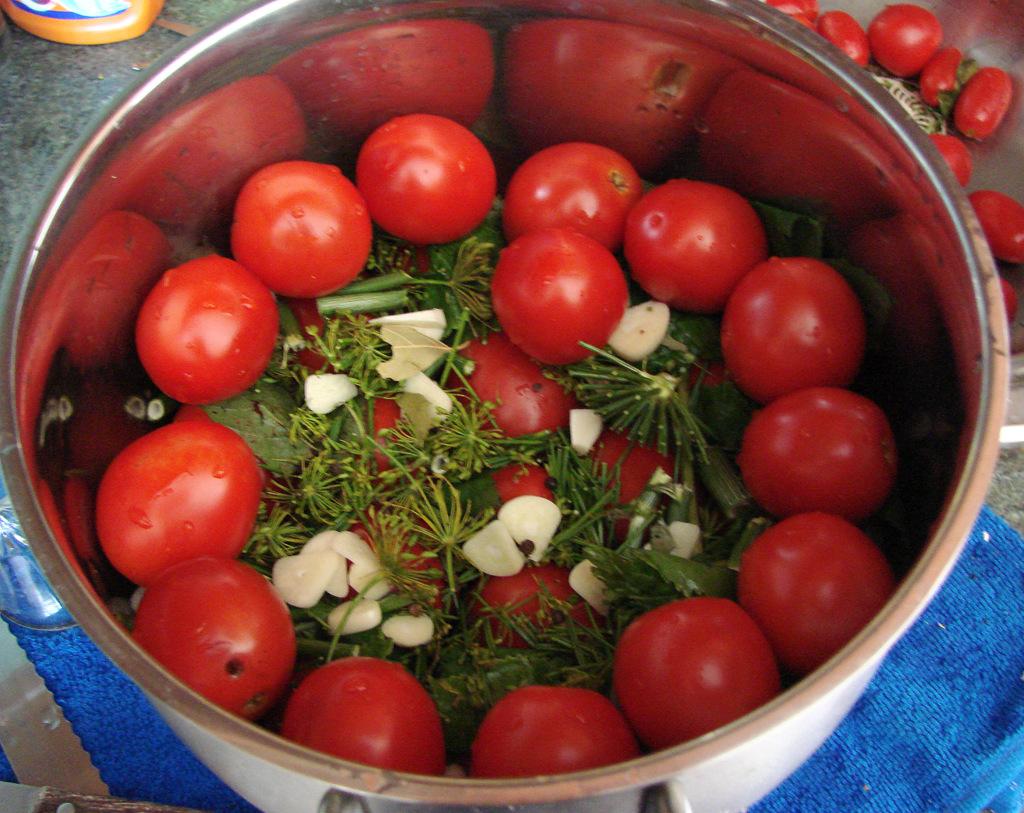 кончик помидоры быстрой засолки рецепт с фото водные сооружения