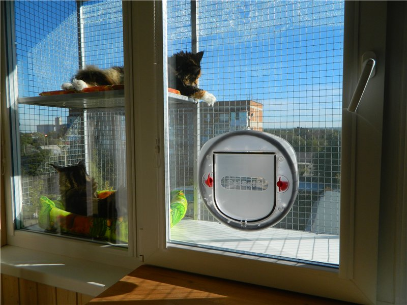 Как сделать балкон для кота