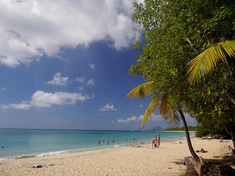 Мартиника фото