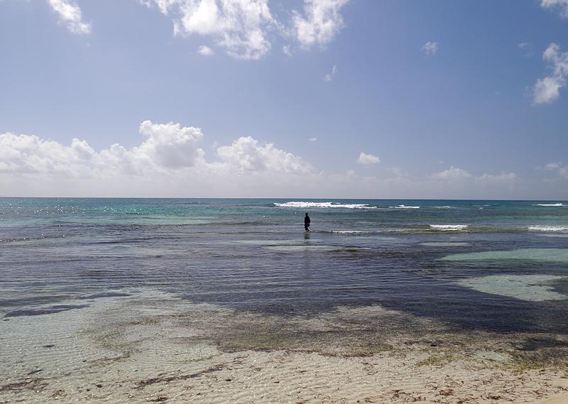 Гваделупа остров
