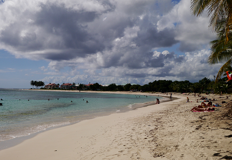 Гваделупа пляж Plage des Raisins Clairs
