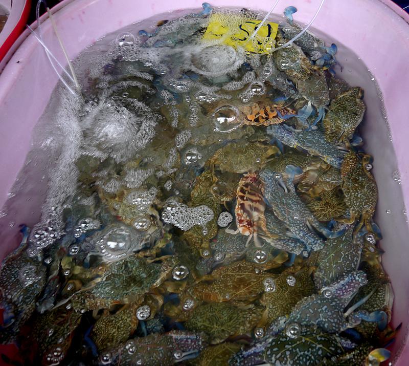 свежие морепродукты на Пхукете