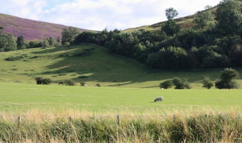 Замки в Шотландии