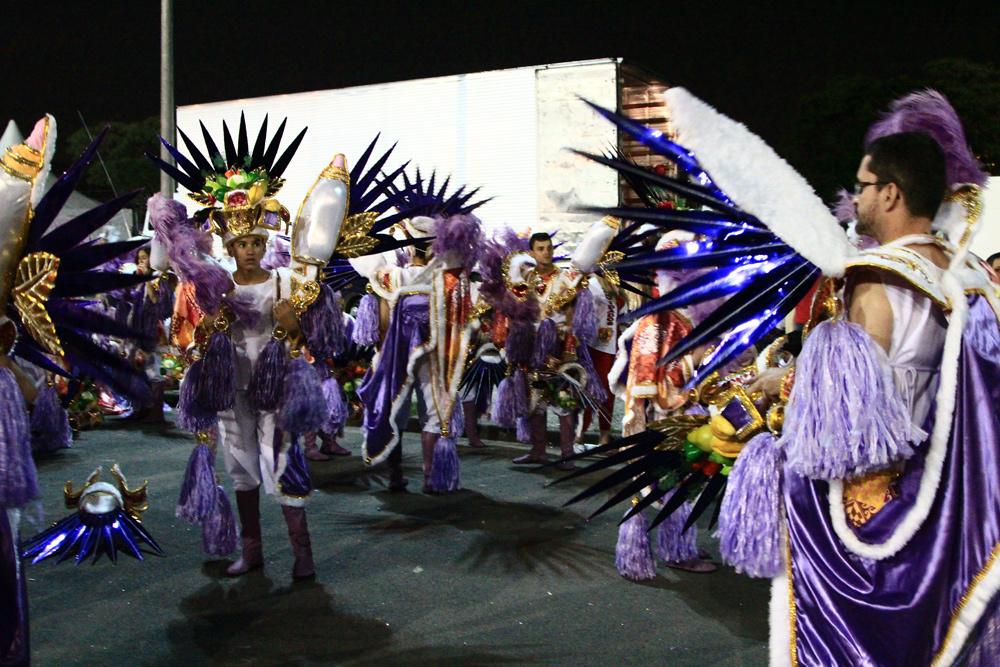Карнавал в Сан Пауло