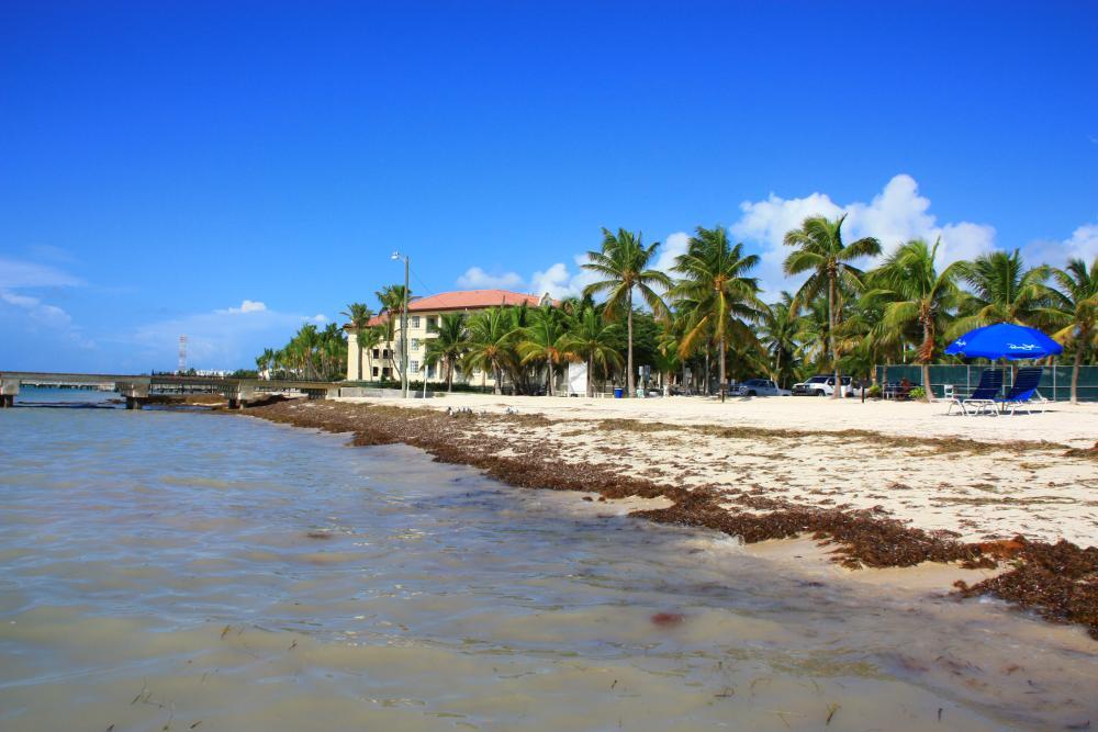 Флорида США
