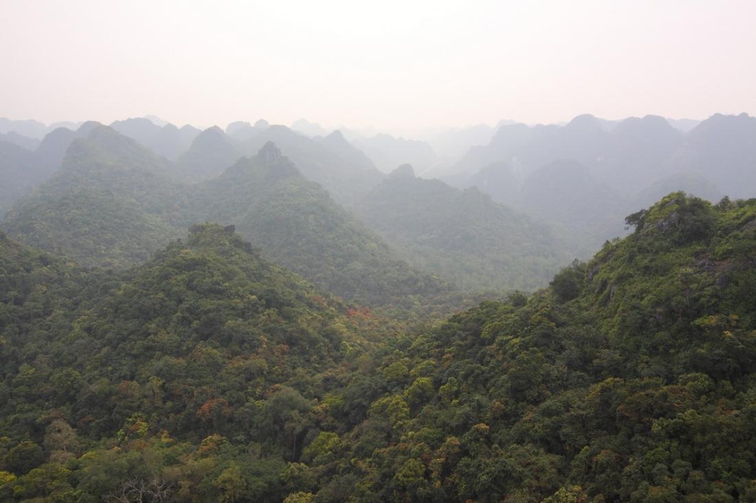 Кругосветка за 8 месяцев. Вьетнам