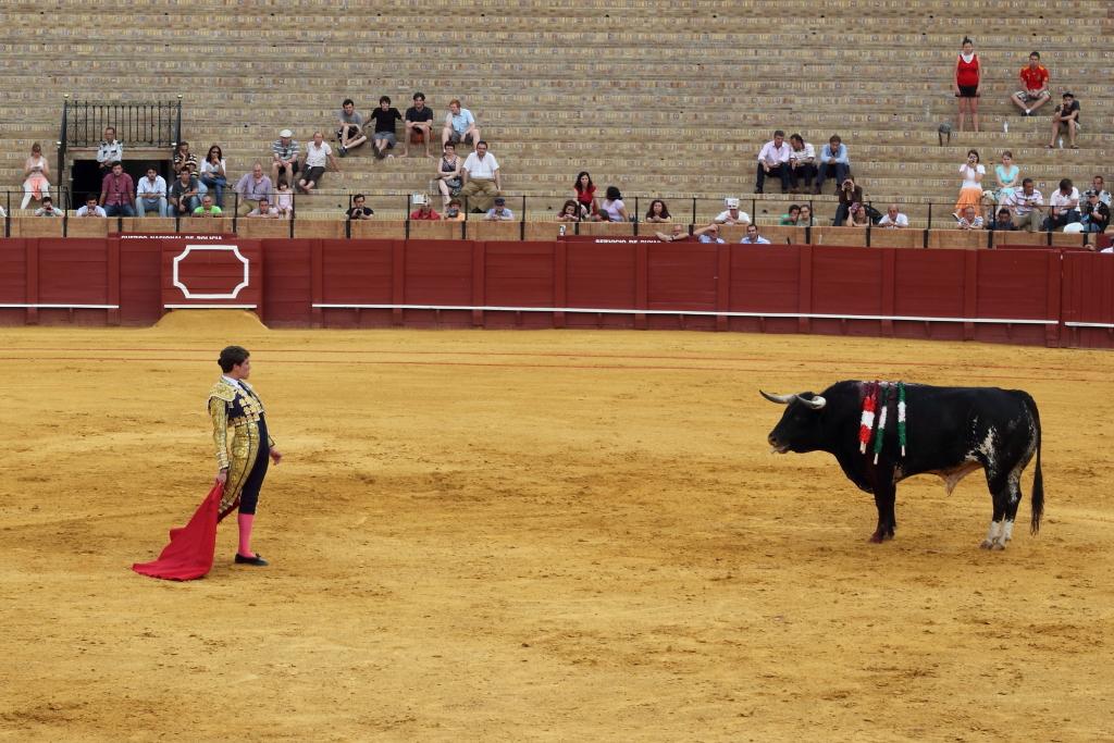 Моя Андалусия. Малага - Нерха - Гранада - Ронда - Кадис - Севилья