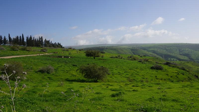 Израиль глазами аборигенов - маршруты короткие и не очень