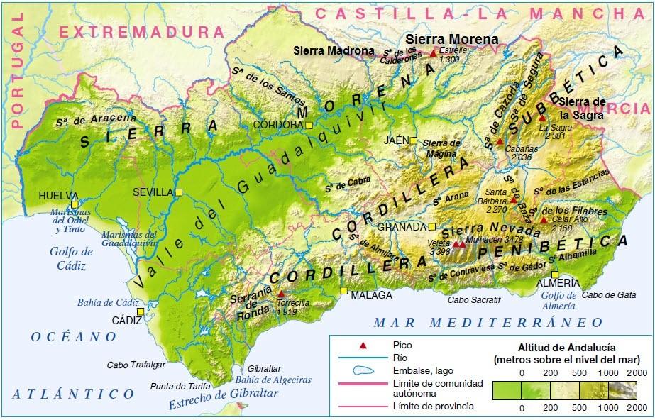 Андалусия случайно, но не скучно: по Сьеррам,  Кордильерам,  Алькасарам и бодегам