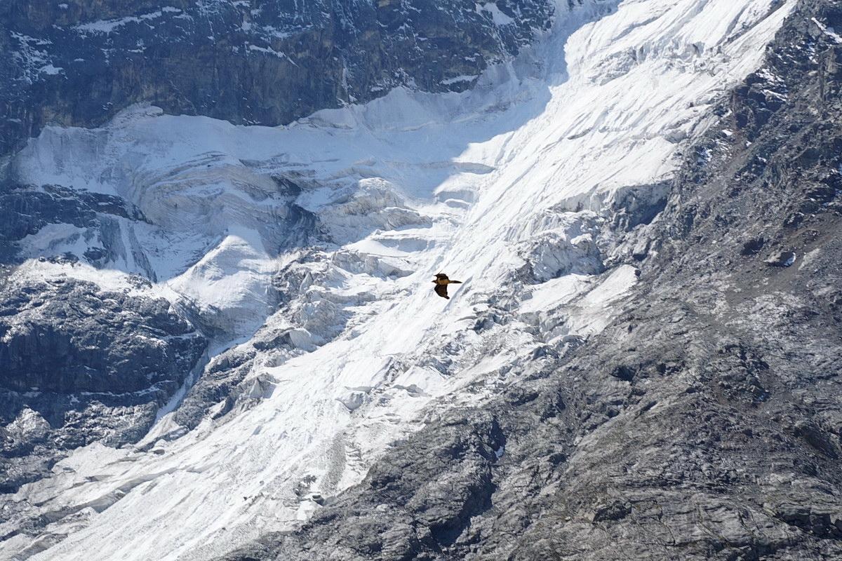 Безенги глазами не альпиниста, почти