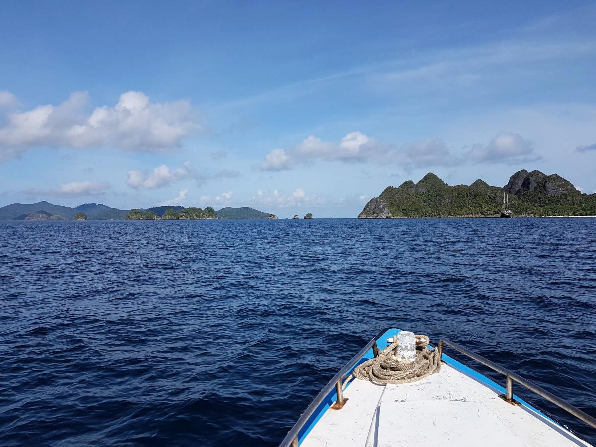 R4: Waigeo, Wayag, Manyaifun, Piaynemo, Arborek, Batanta, Misool (2017г. + 2018 г.)