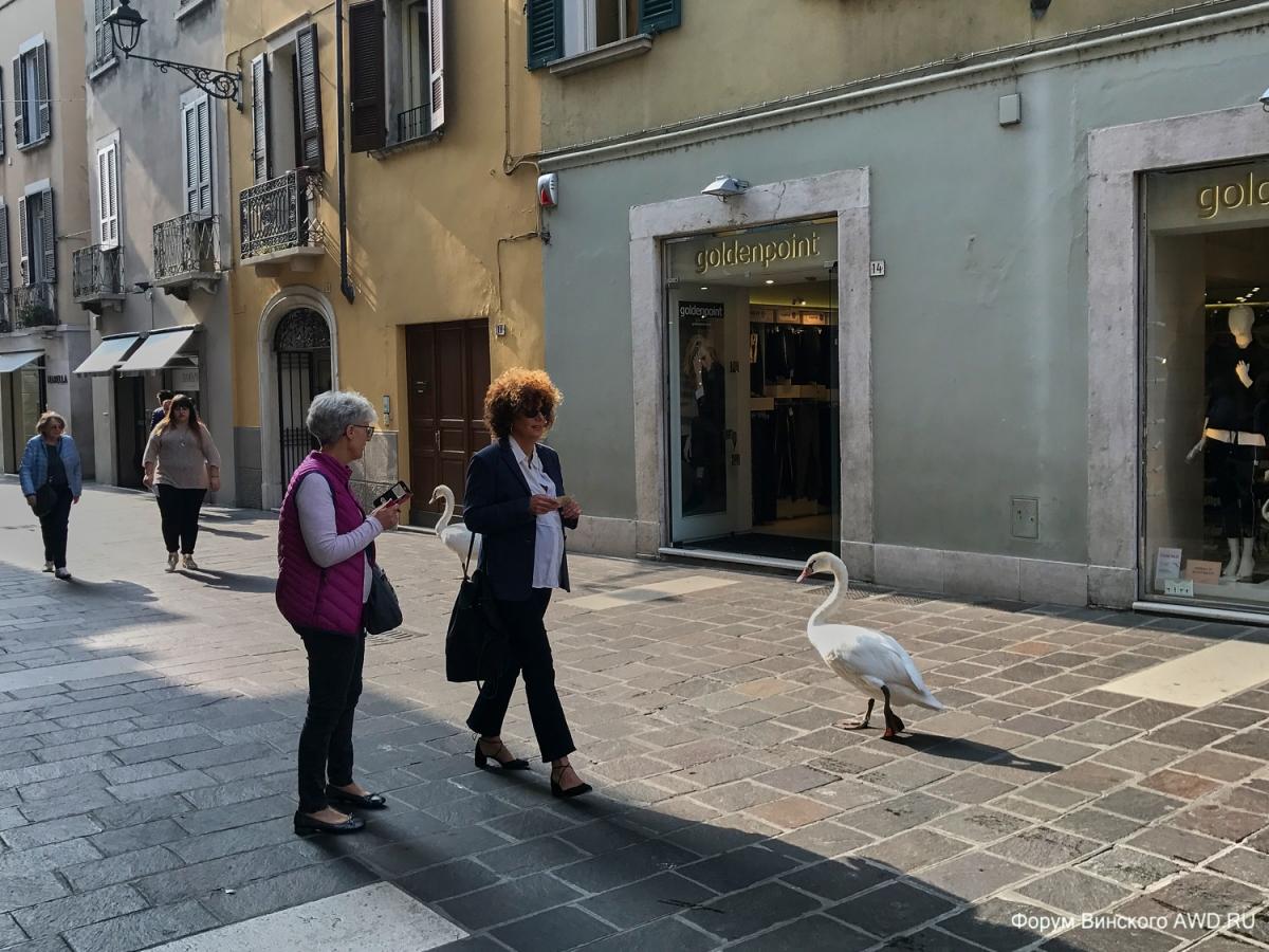 Тоскана на собственный День Рождения