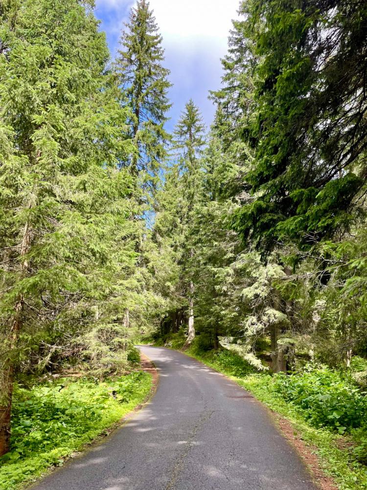 Высота, красота и приключения - 4 дня в Высоких Татрах (август 2021)