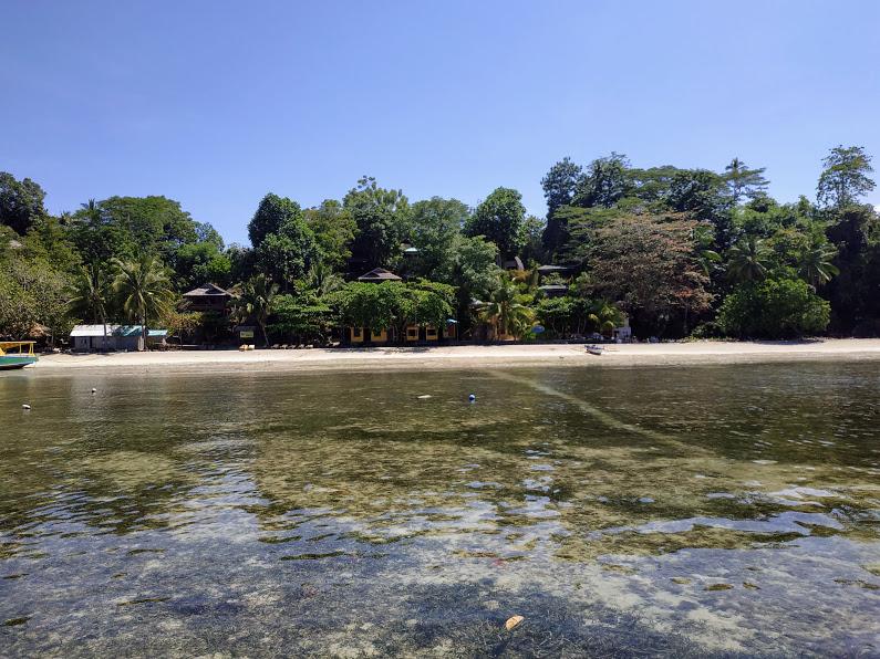Осенний марафон. Тиоман-Бали-Сулавеси. Снорклинг.