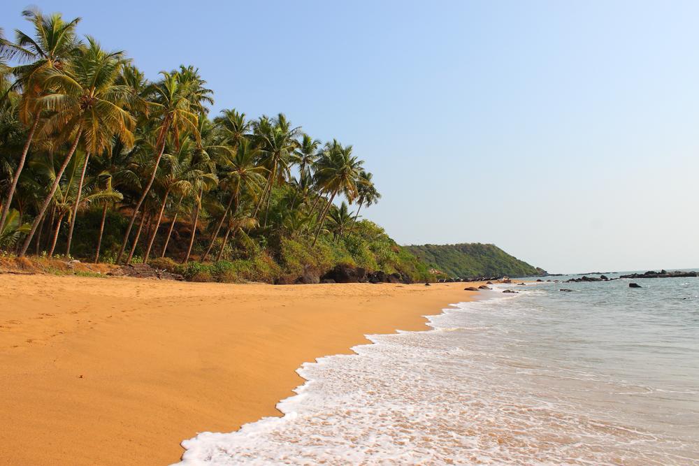 Индия , Южный Гоа ! Отличный отдых !