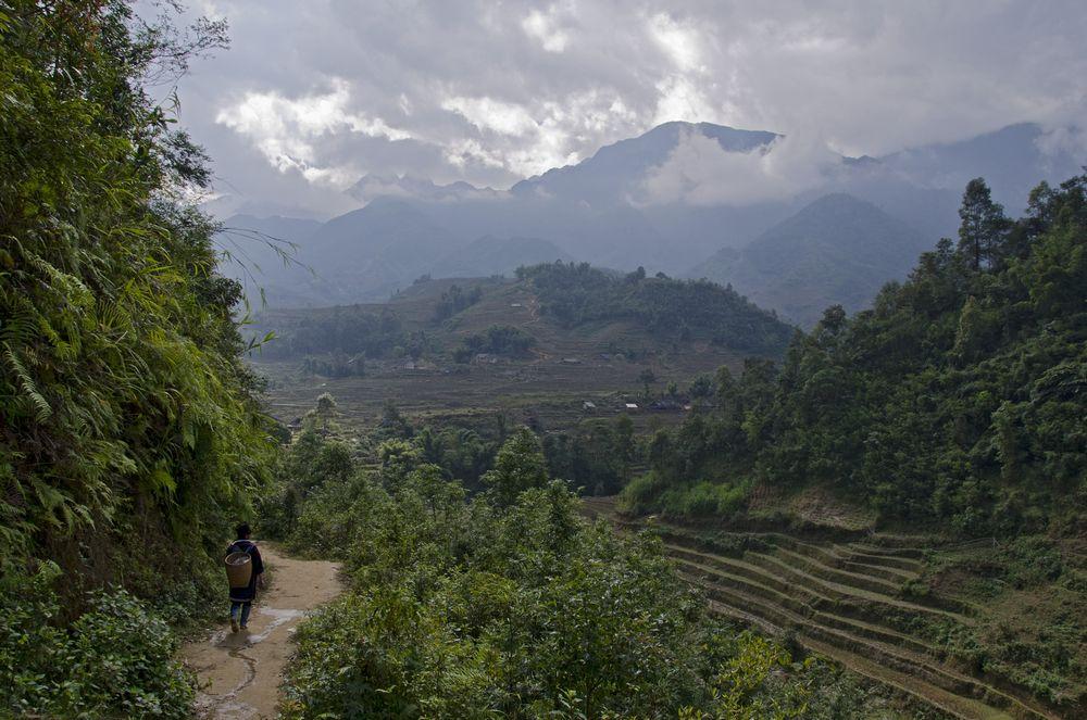 50 дней по ЮВА в одиночку: Таиланд, Вьетнам, Камбоджа.