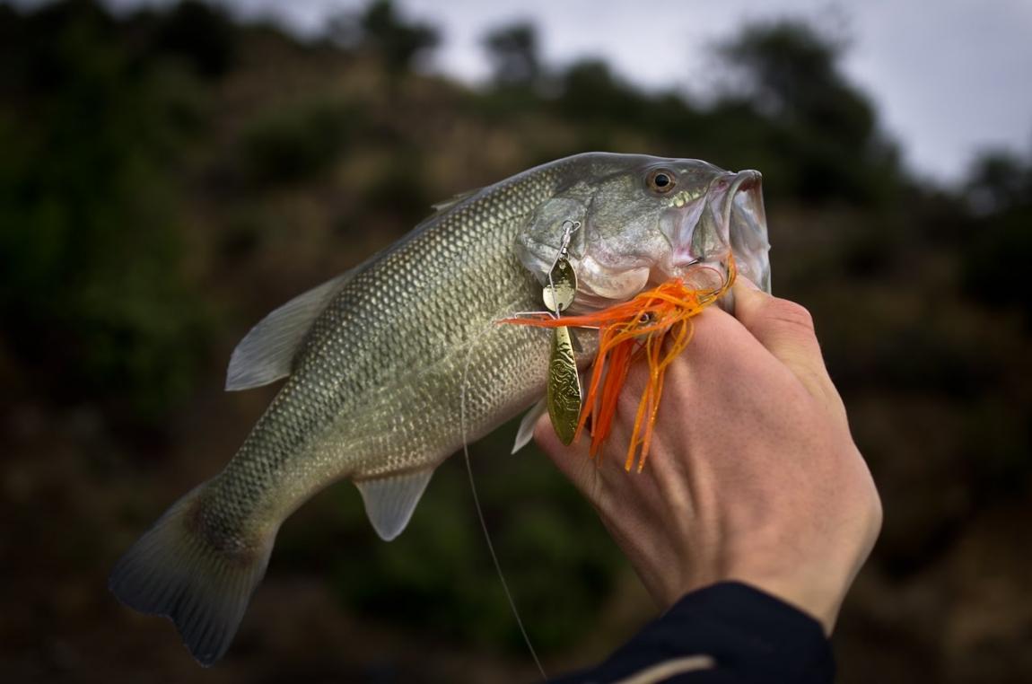 особенности рыбалки на кипре