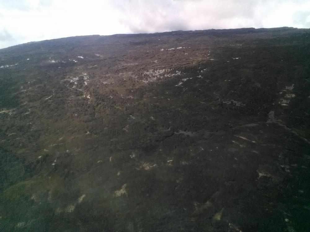 венесуэла рорайма канайма гран саванна