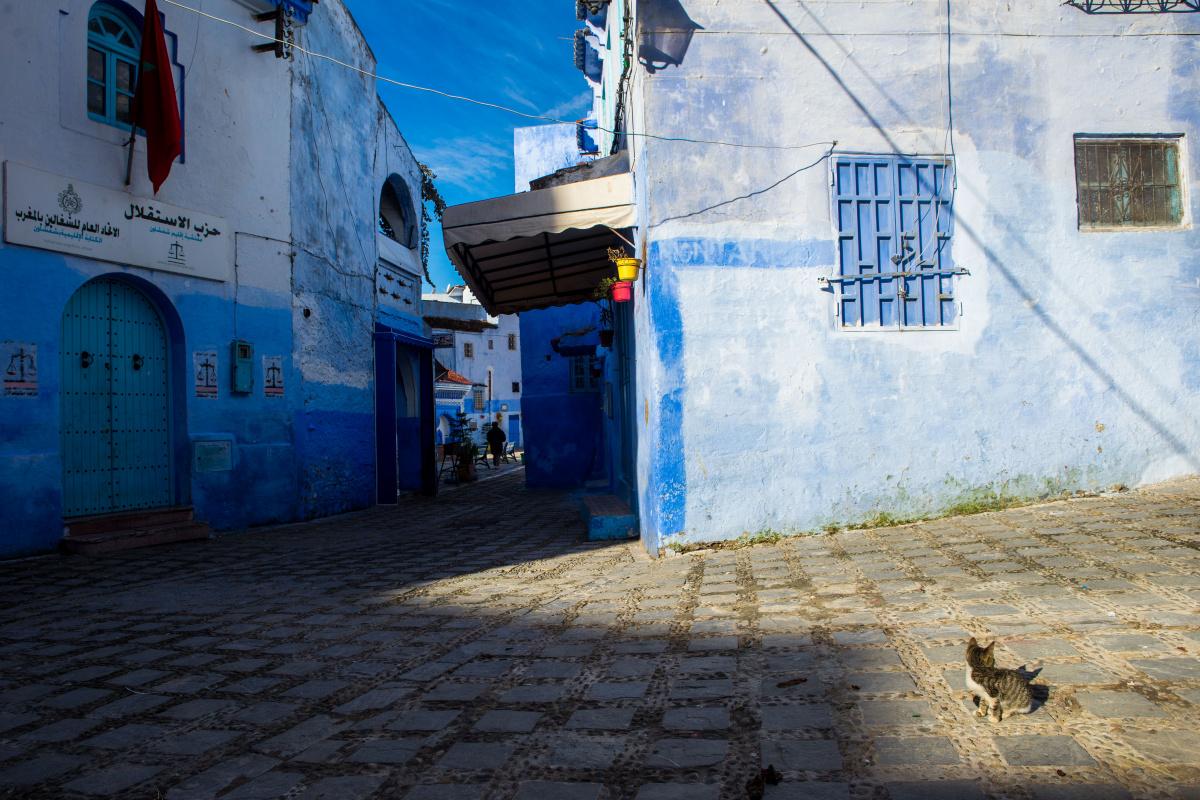 2700км за 13 дней в ноябре по Марокко 2018