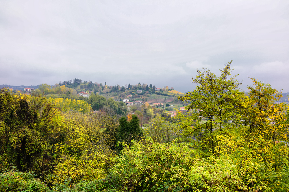 Пьемонт отзывы: винный тур Бароло, фестиваль трюфеля в Альба