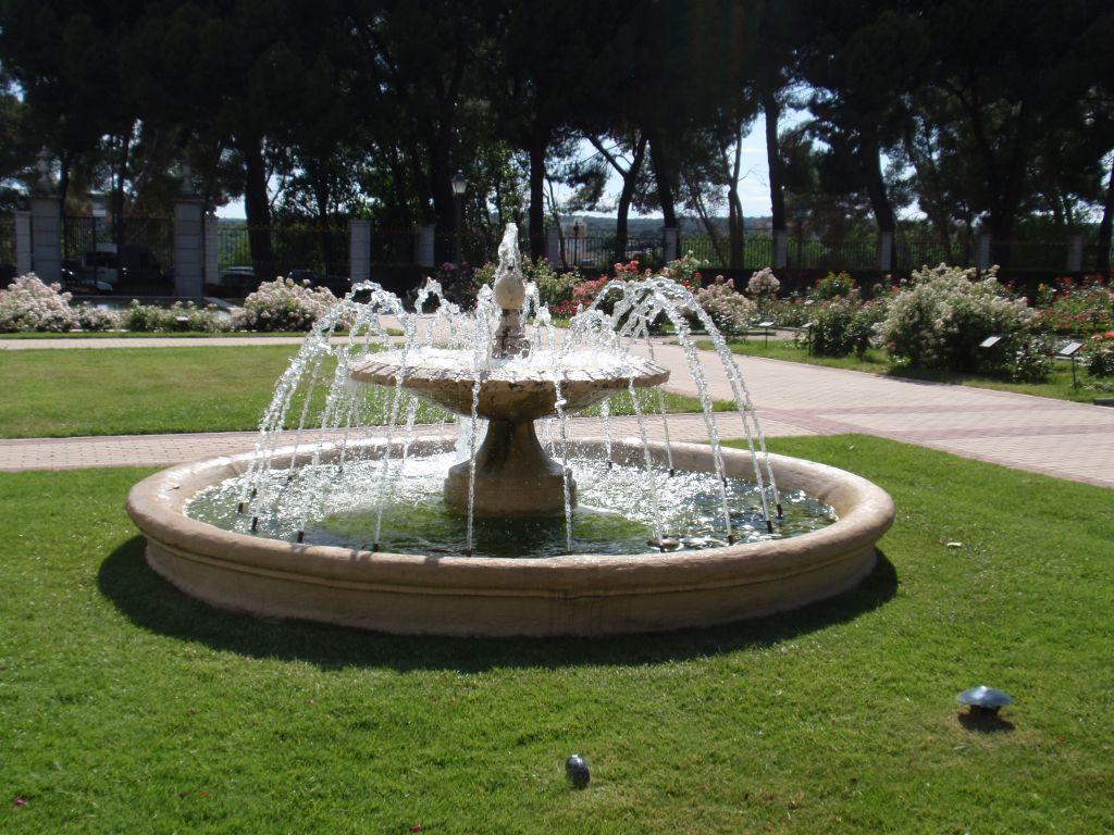 кавказцев отец парковый фонтан фото рисунок цветком для