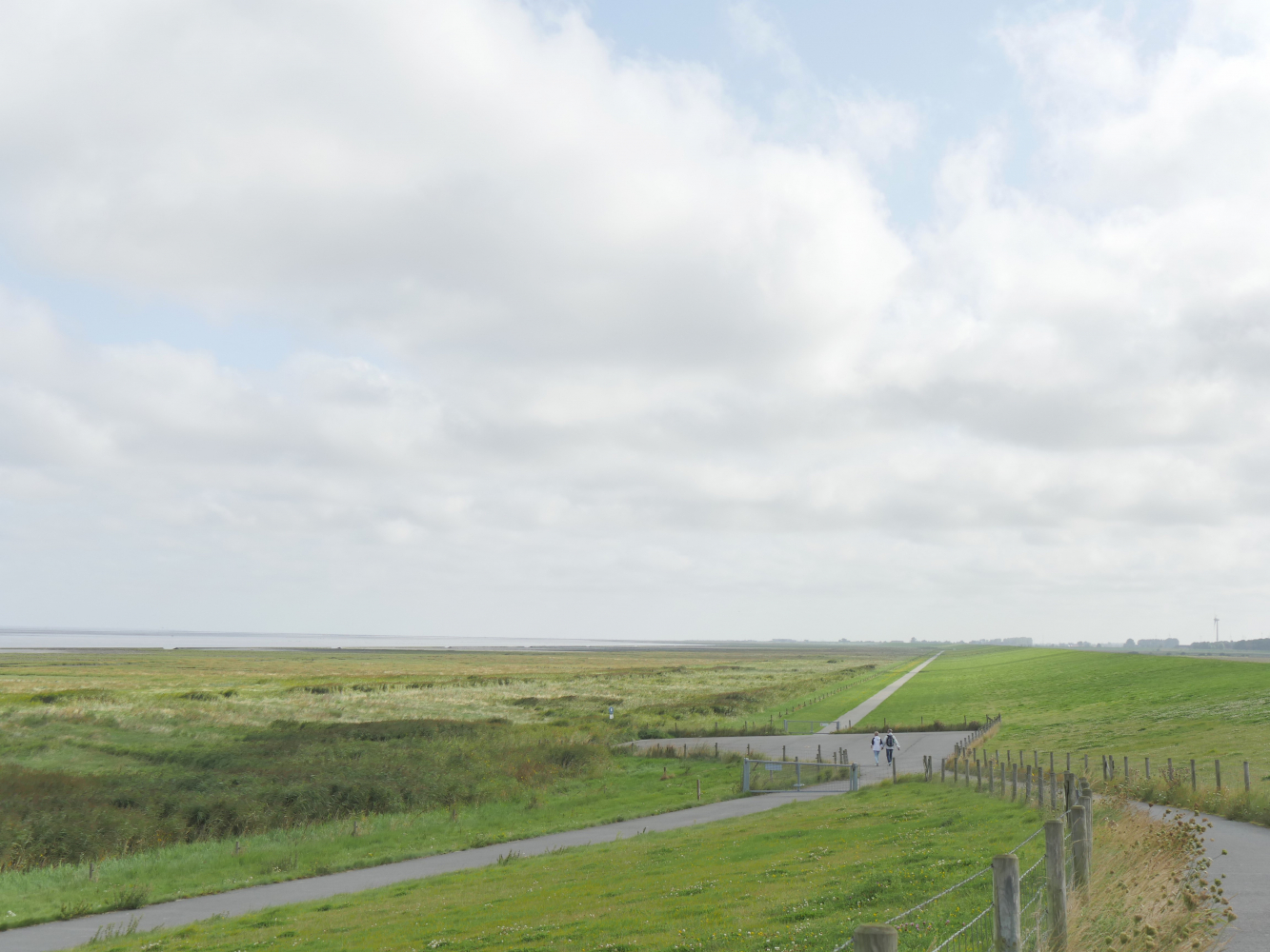 Каникулы в Серенгети-Парке и на Восточно-Фризском полуострове / Ostfriesen