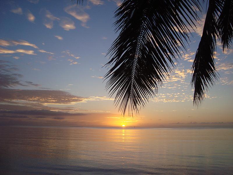 Каникулы под водой: Тонга и Фиджи