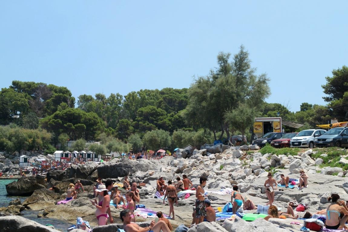 Ласкать большие мужские достоинства на диком пляже онлайн для