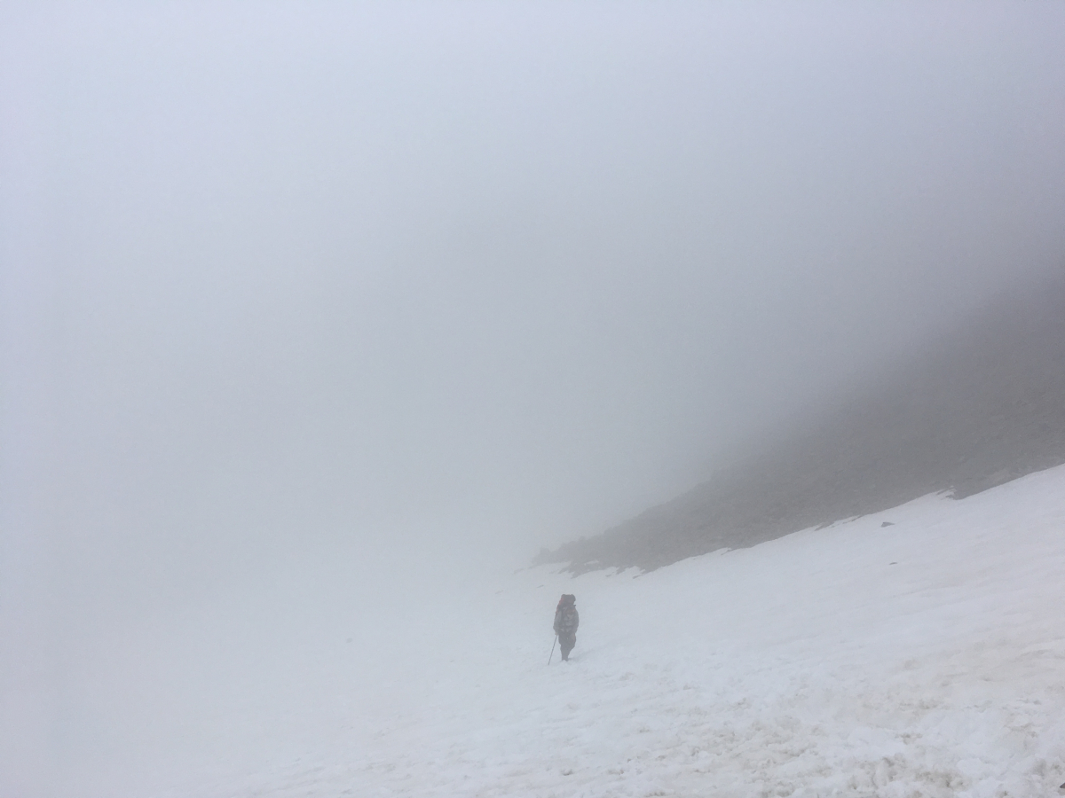Верхняя Савойя, июнь 2018 (Шамони-Монблан-Анси)