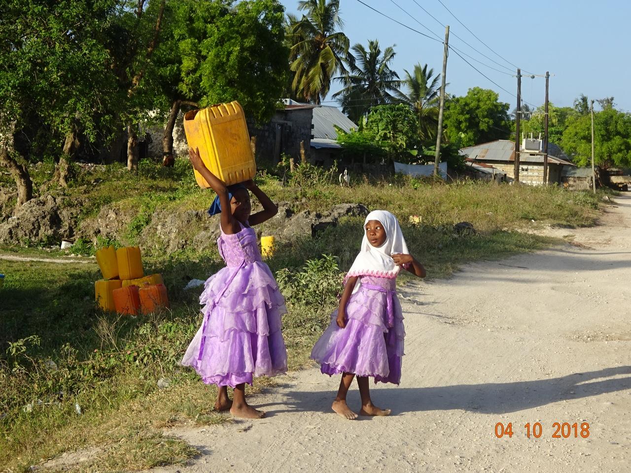 Наши невероятные приключения на Занзибаре и в Танзании( о. Занзибар, г Дар-эс-Салам,г Аруша, сафари в парках Тарангире, Нгоронгоро, Серенгети,Маньяра)