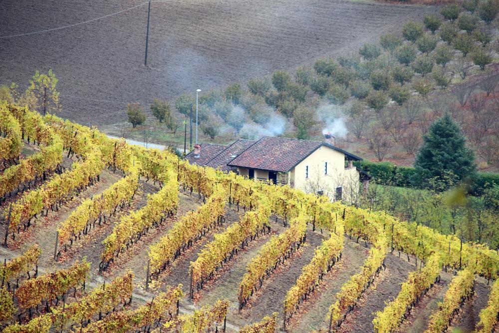 Бароло, музей вина в Гринцане Кавур