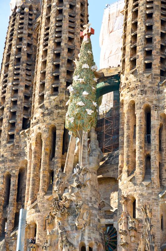 Победа нокаутом. Барселона - Канары,  весна 2012