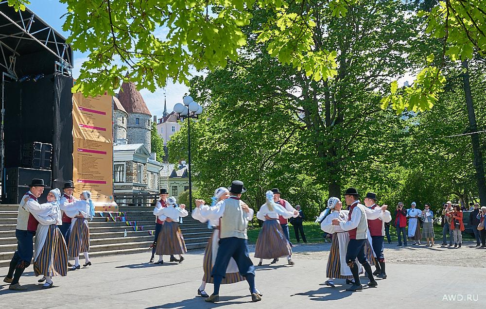 Красивые места Эстонии. Куда можно съездить и что посмотреть в Эстонии кроме Таллина.