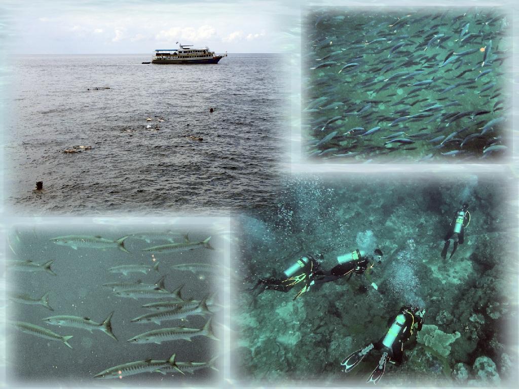 Снорклинг-круиз по северным Андаманским островам Таиланда, морские цыгане, пляжи-баунти