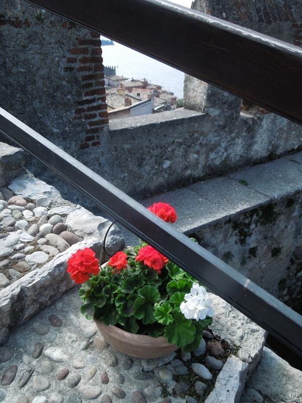 2012, апр. Веронщина, чуть-чуть Гарда и Бергамщина. Чемоданы и Макароны.