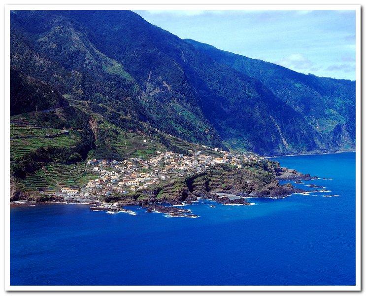 Мадейра фото отзывы