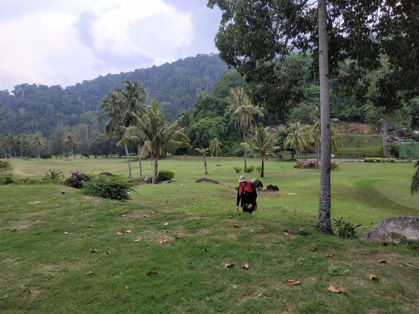 Тиоман в октябре. Berjaya Tioman Resort. Снорклинг.
