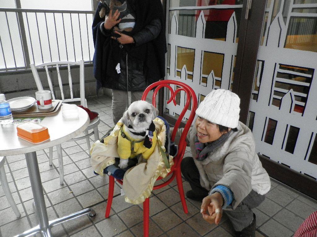 Смотреть приставание в японском метро 8 фотография