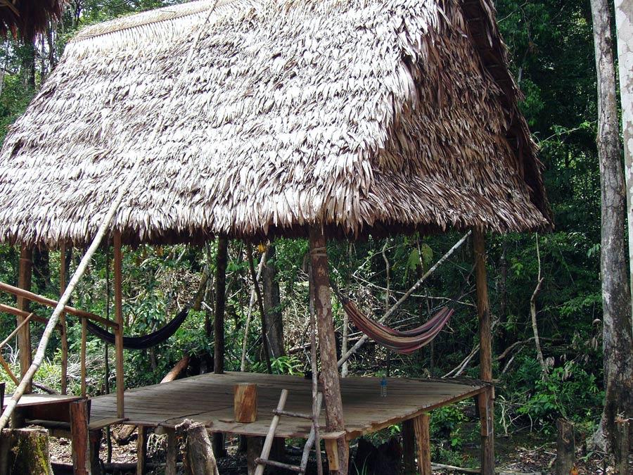 Аяваска Перу