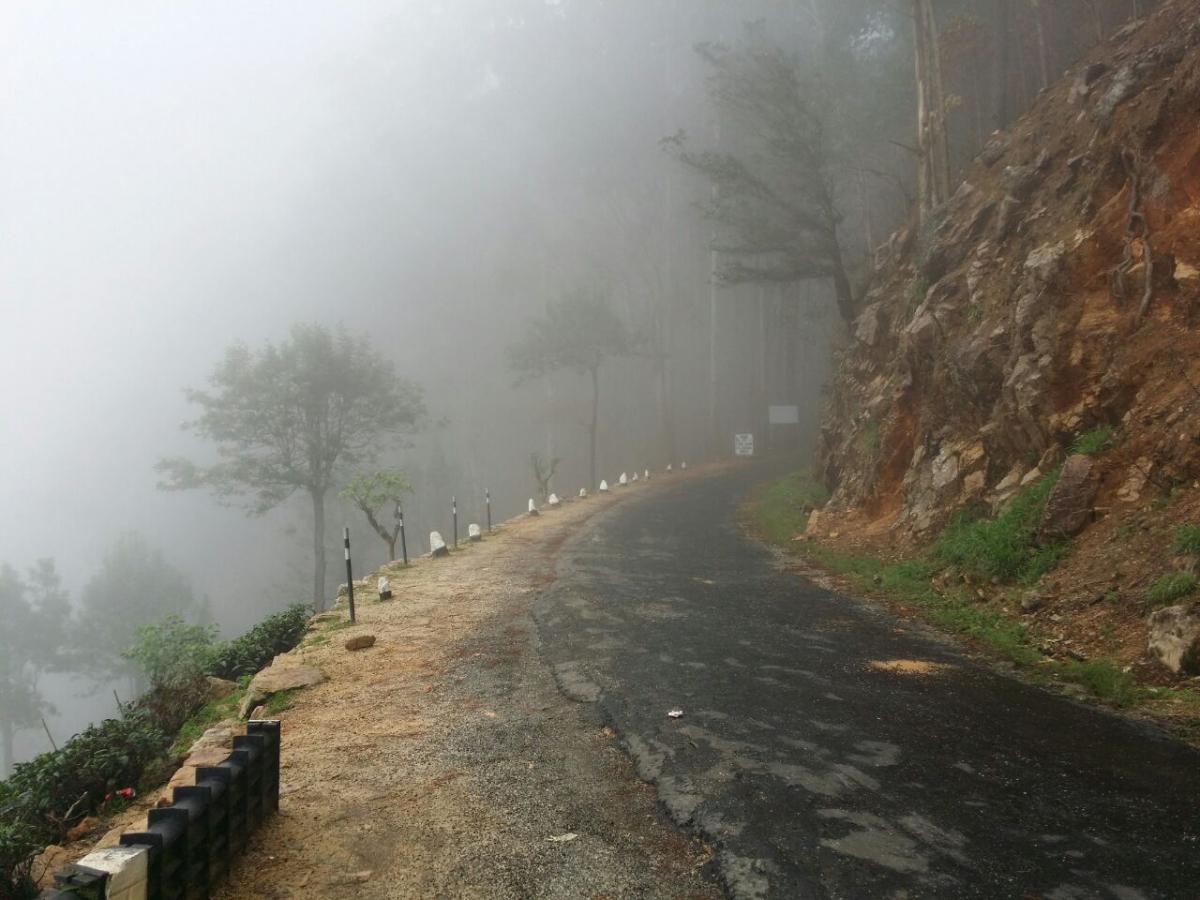 Шри-Ланка на скутере. Вопросы и советы по маршруту.