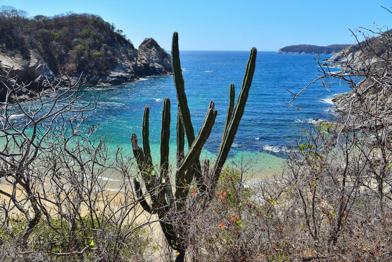 Два круга по Мексике в феврале-марте 2021