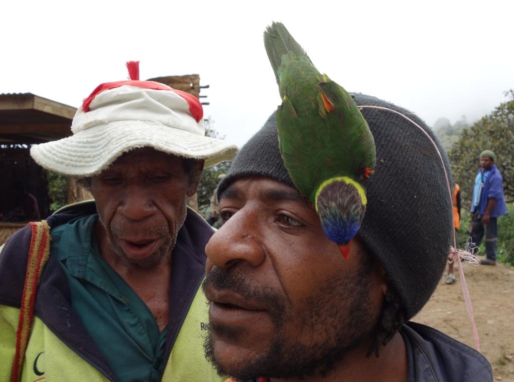 В гости к папуасам