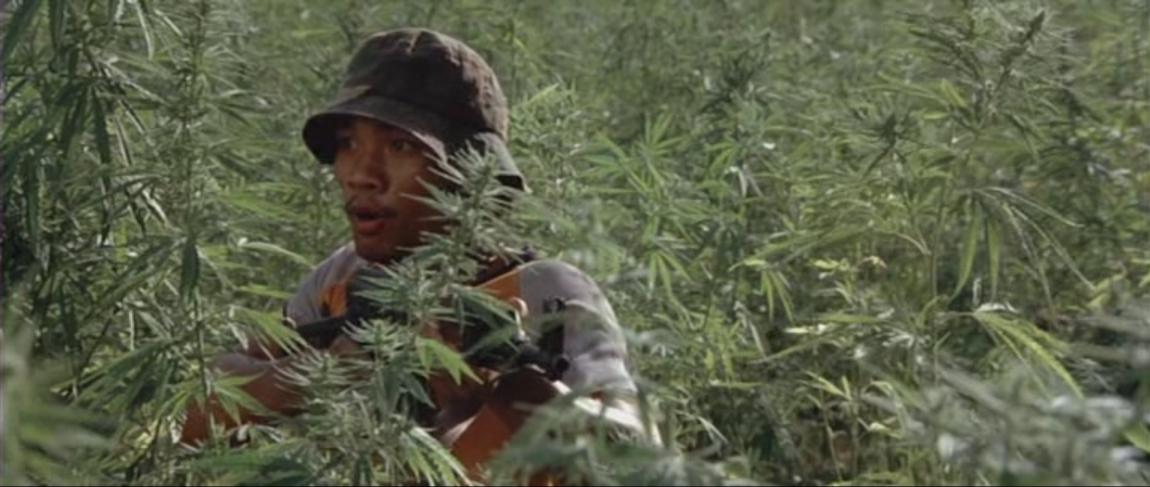 Фильм про марихуану на острове скачать тему на андроид коноплю