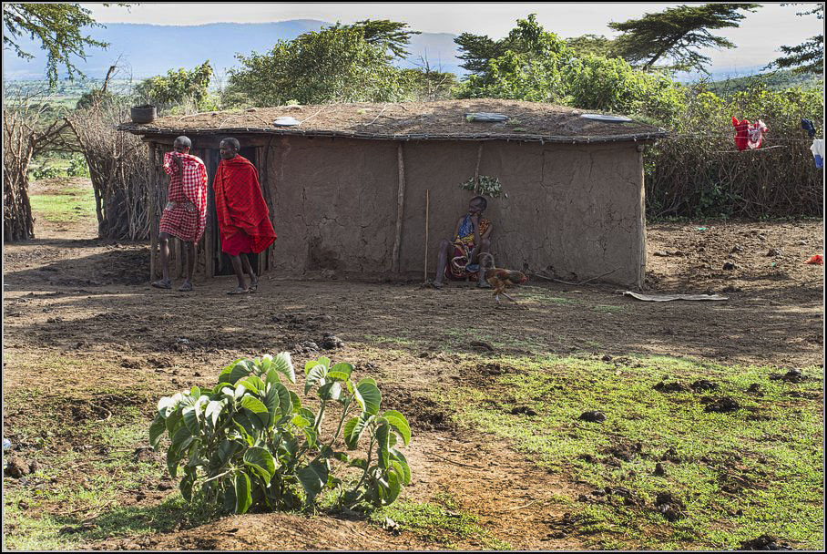 Кения, Танзания, Занзибар. Сафари и пляж. Советы, фото, бюджет