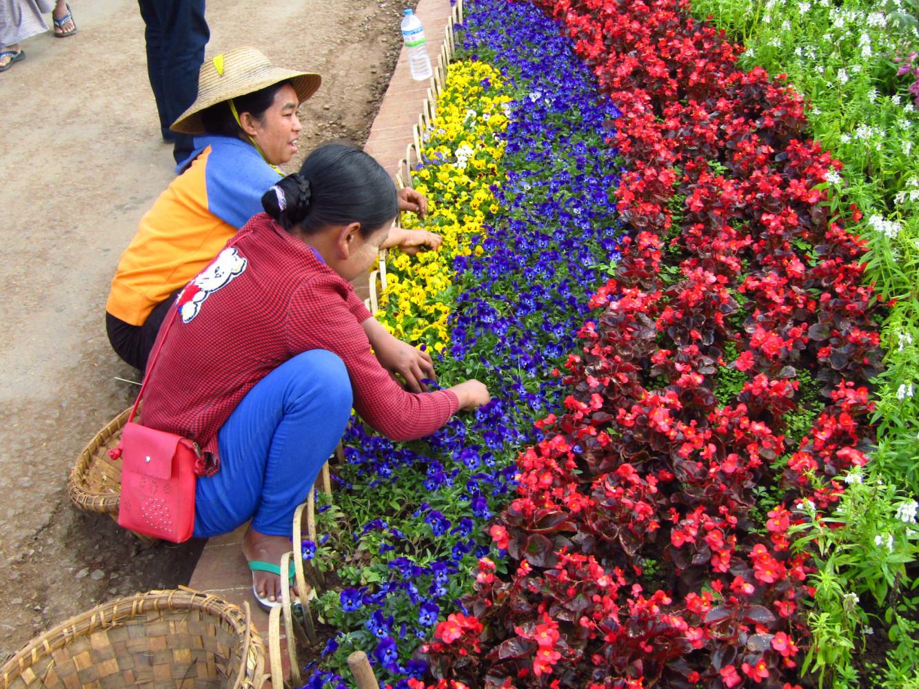 Месяц в Мьянме. Январь 2020. Мандалай - Пин-у-Львин -Сипо - Сагайн -Баган -Ньяунг-Шве(оз.Инле) -Янгон -Чаунг-Та(море) -Баго-Хра-ан