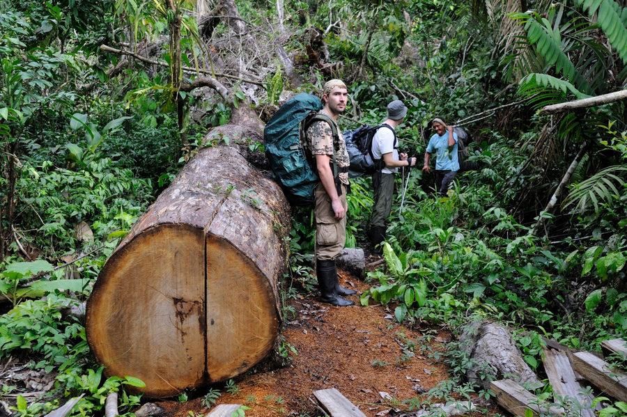 Колумбия: Джунгли, кофе, Анды и карнавал.(Траффик!)