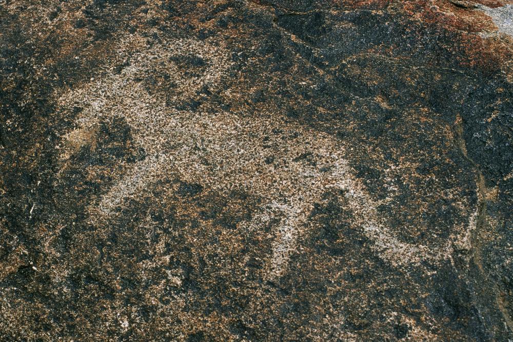 Вокруг озера Иссык-Куль в мае (Конорчек, Ала-Кель и окрестности)