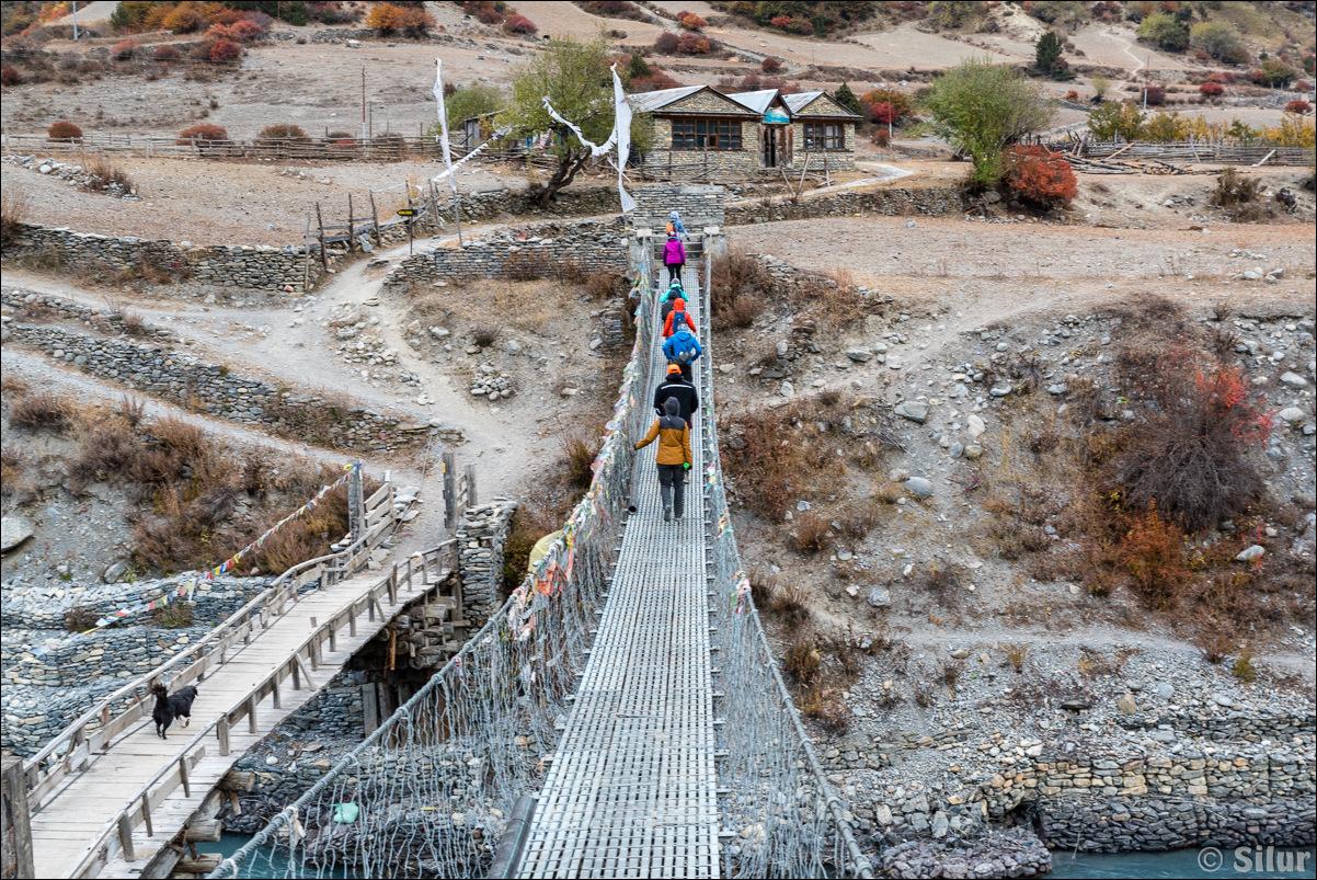 Похождение горных ежей (вокруг Аннапурны)