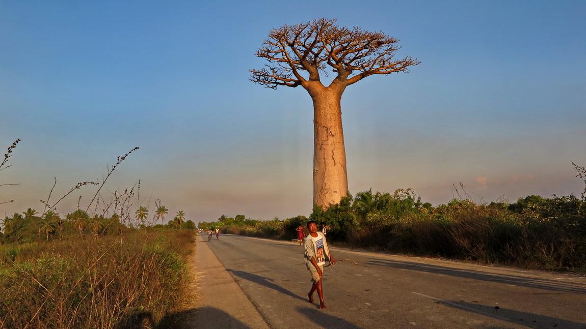 Мадагаскар 2016,осень