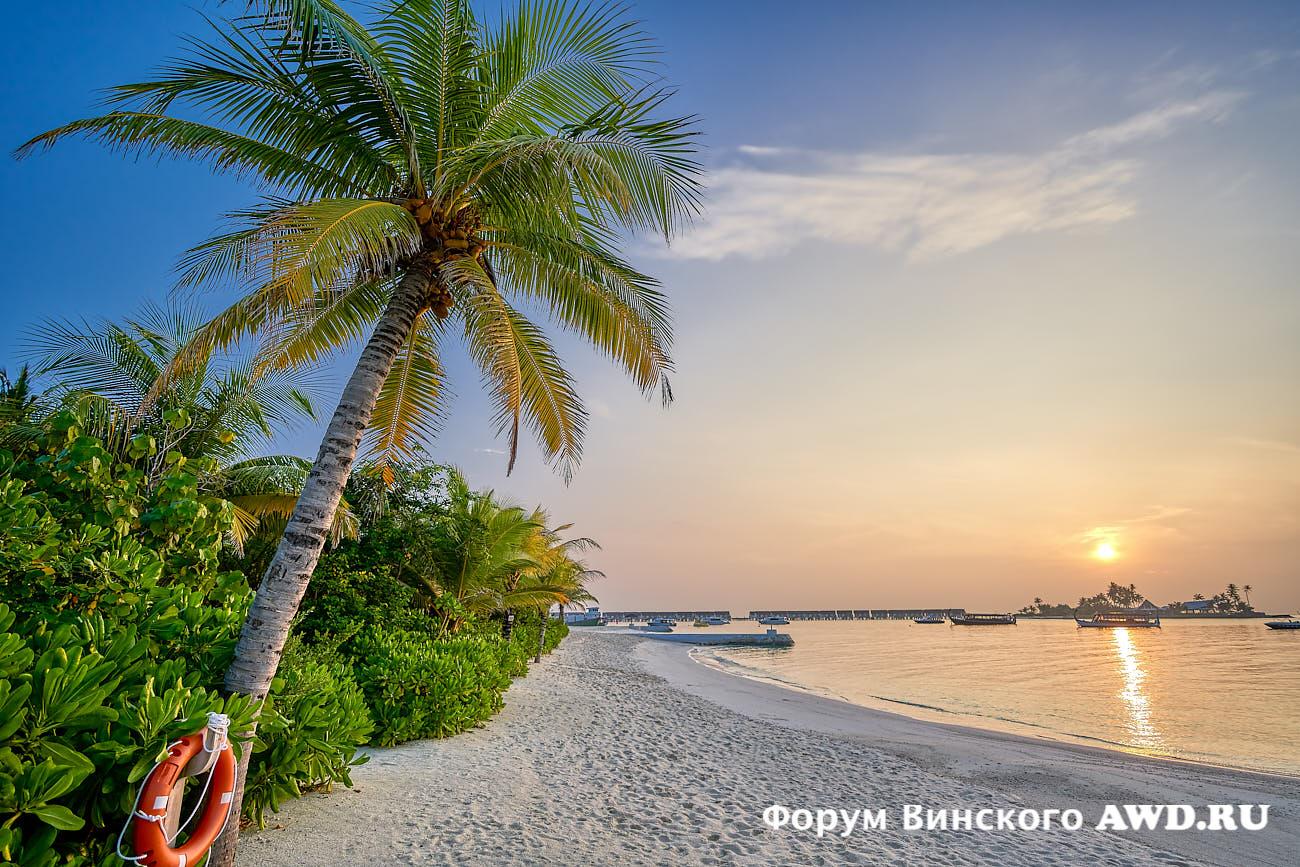 Мальдивы 2021 недорого на Новый год в OBLU Select